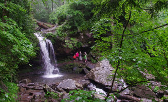 Top 4 Waterfalls in the Smokies: Click to read more.