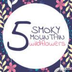 wildflowers-pfweb