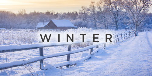 winter planning guides