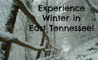 Experience Winter in East Tennessee