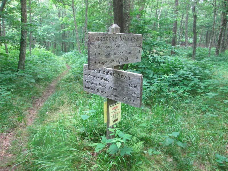 Gregory Bald Trail (Gregory Bald)