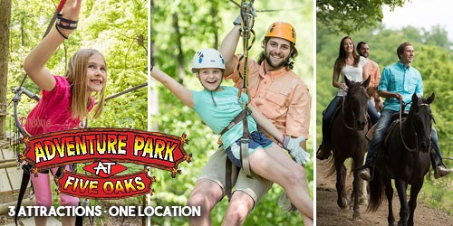 Pigeon Forge Coupons